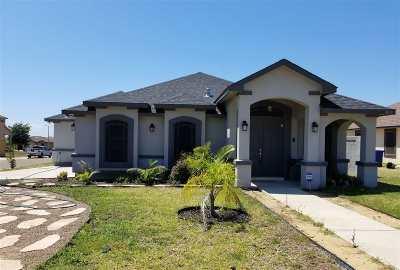 Laredo Single Family Home For Sale: 10014 Toinette