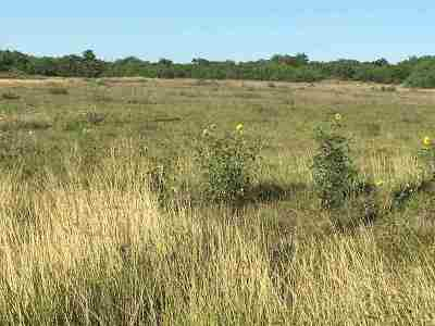 Laredo Commercial Lots & Land For Sale: 9417 McPherson Rd