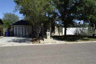 Laredo Single Family Home For Sale: 4224 Campeche Dr