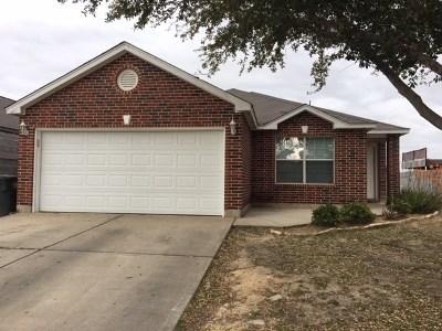 Laredo Single Family Home For Sale: 2995 Rains Dr