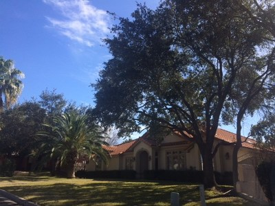 Laredo Single Family Home For Sale: 105 Cardinal Ln
