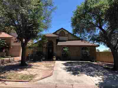 Laredo Single Family Home For Sale: 134 Lynn Lp