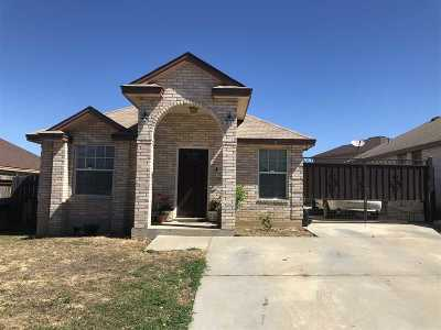 Laredo Single Family Home For Sale: 3710 Aguanieve Dr.