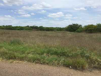 Laredo Commercial Lots & Land For Sale: 1 Marshall St