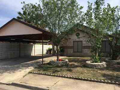 Laredo Single Family Home For Sale: 139 Pamplona Lp