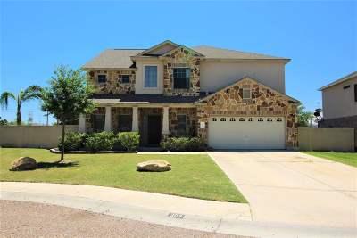 Laredo TX Single Family Home For Sale: $369,900