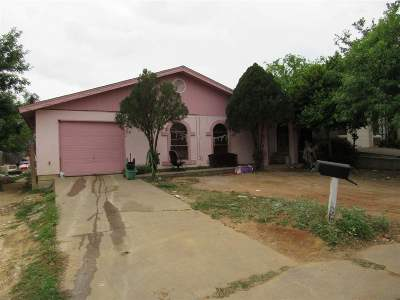 Laredo Single Family Home For Sale: 3913 Calle Mazatlan