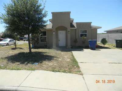 Laredo Single Family Home For Sale: 5120 Pirul Crt