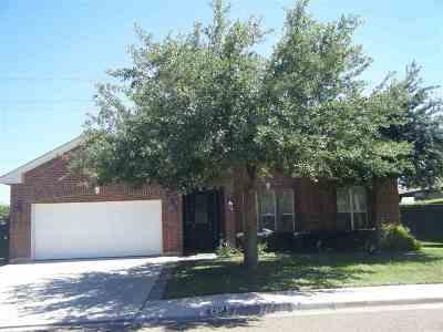 Single Family Home For Sale: 2911 Mehlhorn Lp