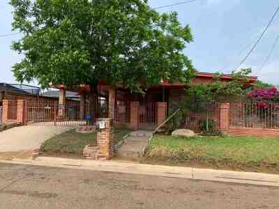 Laredo Single Family Home For Sale: 2108 S India Ave