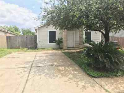 Laredo Single Family Home Option-Show: 211 Lipan Dr