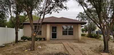 Laredo Single Family Home For Sale: 314/316 Pontevedra Crt