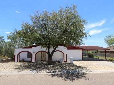 Zapata County Single Family Home For Sale: 192 Vista Hermosa