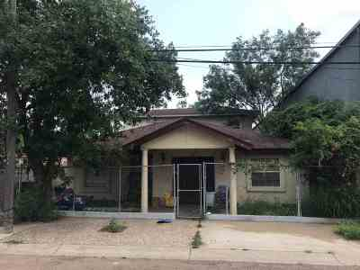 Laredo Single Family Home For Sale: 905 Willow St