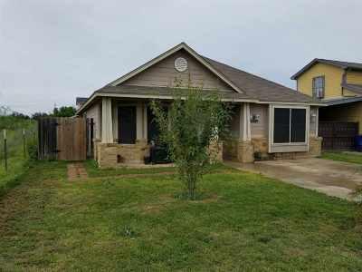 Laredo Single Family Home For Sale: 5318 Nayarit St.