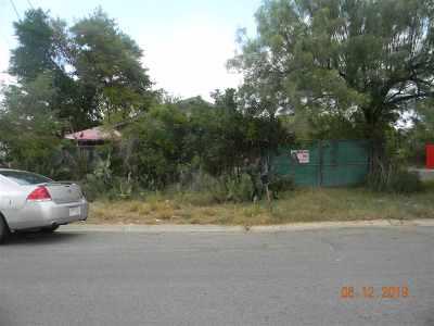 Laredo Single Family Home For Sale: 3120 Bismark St