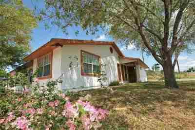 Zapata Single Family Home For Sale: 390 Papaya Dr