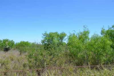 Laredo Residential Lots & Land For Sale: Gaona Tracts Lot 16
