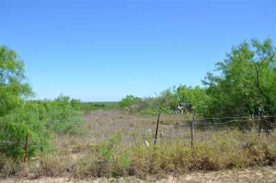 Laredo Residential Lots & Land For Sale: Gaona Tracts Lot 27b