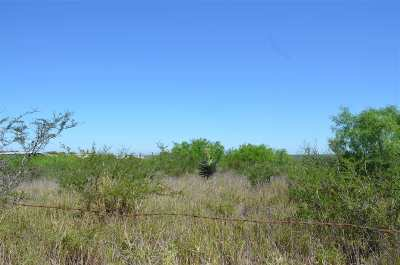 Laredo Residential Lots & Land For Sale: Gaona Tracts Lot 11