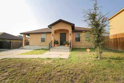 Laredo Single Family Home For Sale: 3406 Nubes Dr