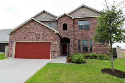 Laredo Single Family Home For Sale: 123 Tranquilo Dr