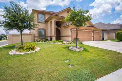 Laredo Single Family Home For Sale: 120 Guanajuato Dr.