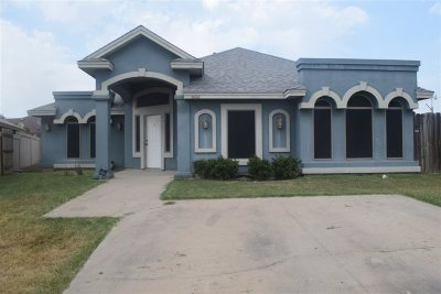 Single Family Home For Sale: 6116 Alpes Ct