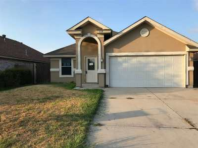 Laredo Single Family Home For Sale: 519 Don Jose Dr.