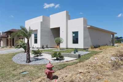 Laredo Single Family Home For Sale: 505 Wye Oak St