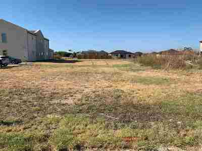 Laredo Commercial Lots & Land For Sale: Don Camilo Blvd