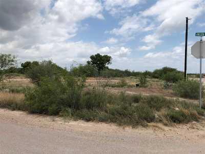 Laredo Residential Lots & Land For Sale: Adelita