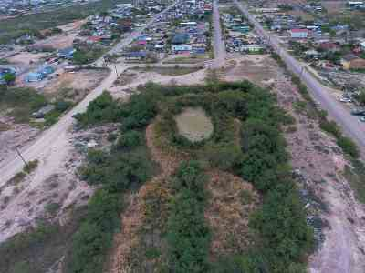 Laredo Residential Lots & Land For Sale: Emiliano