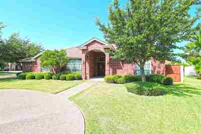Laredo Single Family Home For Sale: 10602 Kirby Dr