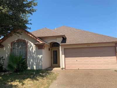 Laredo Single Family Home For Sale: 303 Cinnamon Teal Lp