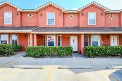 Laredo Condo/Townhouse For Sale: 1016 Dicky Lane #5