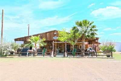Laredo Single Family Home For Sale: 337 Pearson Moss Ln