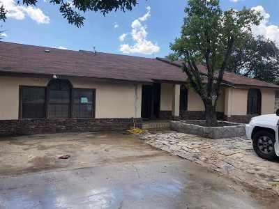 Laredo Single Family Home For Sale: 207 Century Blvd