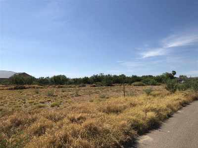Laredo Residential Lots & Land For Sale: 7061 U.s. Hwy 359