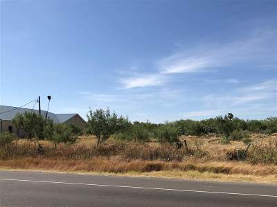 Laredo Residential Lots & Land For Sale: 7063 U.s. Hwy 359