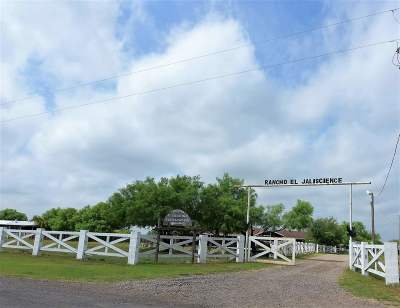 Laredo Residential Lots & Land For Sale: 258 Pearson Moss Ln