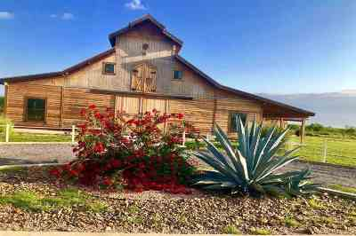 Laredo Commercial For Sale: 1900 Garland