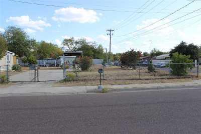 Laredo Residential Lots & Land For Sale: 801 E Travis St