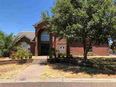 Laredo Single Family Home For Sale: 110 Mourning Dove Ct