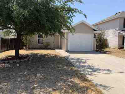 Laredo Single Family Home For Sale: 17539 College Port Dr