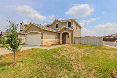 Laredo Single Family Home For Sale: 3401 Armando Pena Dr