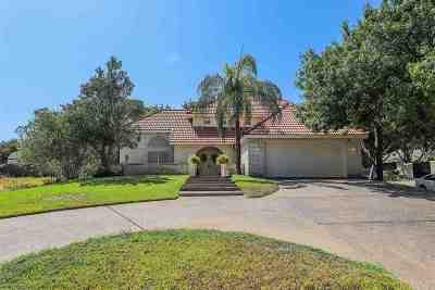 Laredo Single Family Home For Sale: 433 Puig Dr
