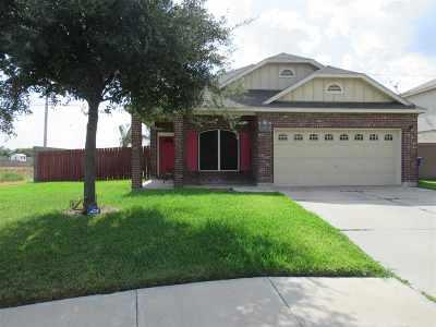 Laredo Single Family Home For Sale: 11202 Granados St
