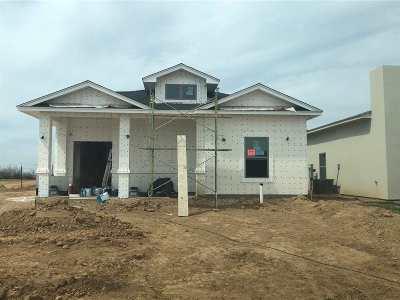 Laredo Single Family Home For Sale: 3815 Gia St.