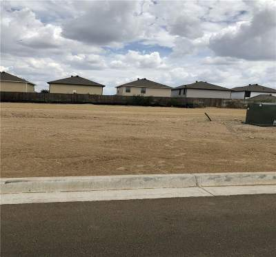 Laredo Single Family Home For Sale: 3811 Gia St.